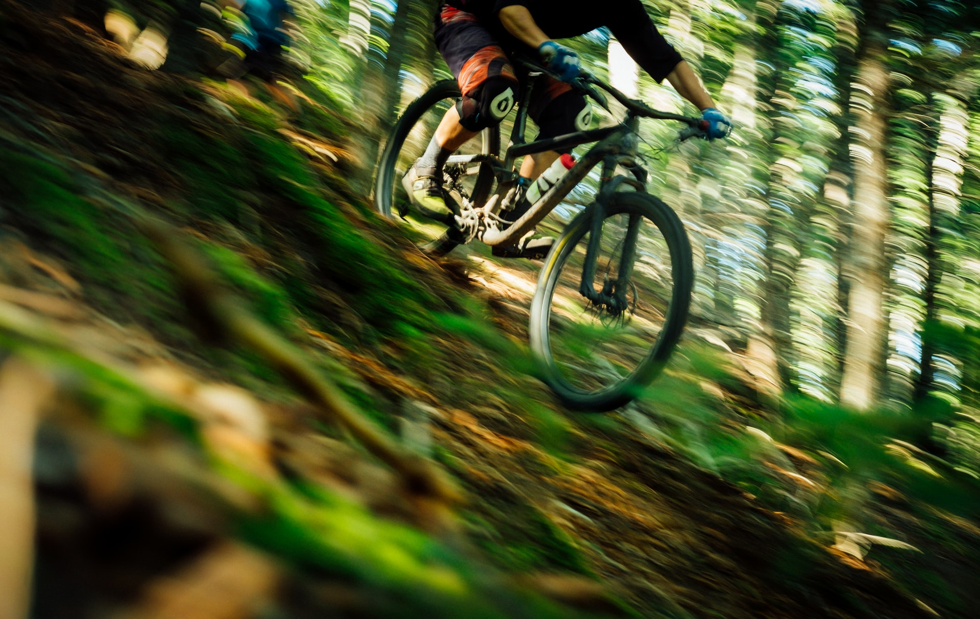 Mount Hermon Felton Bike Park