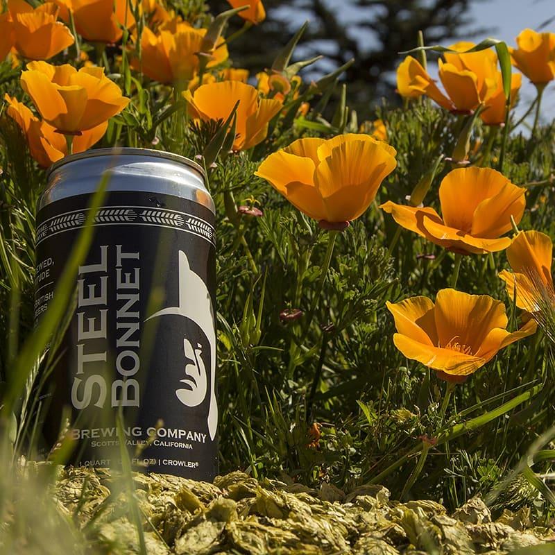 Mountain Fermenter Steel Bonnet Brewing Company