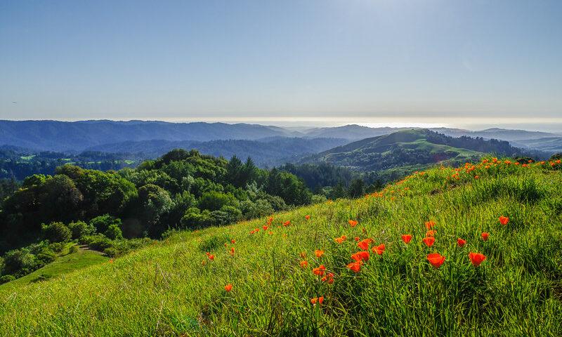 Rural Santa Cruz Mountains