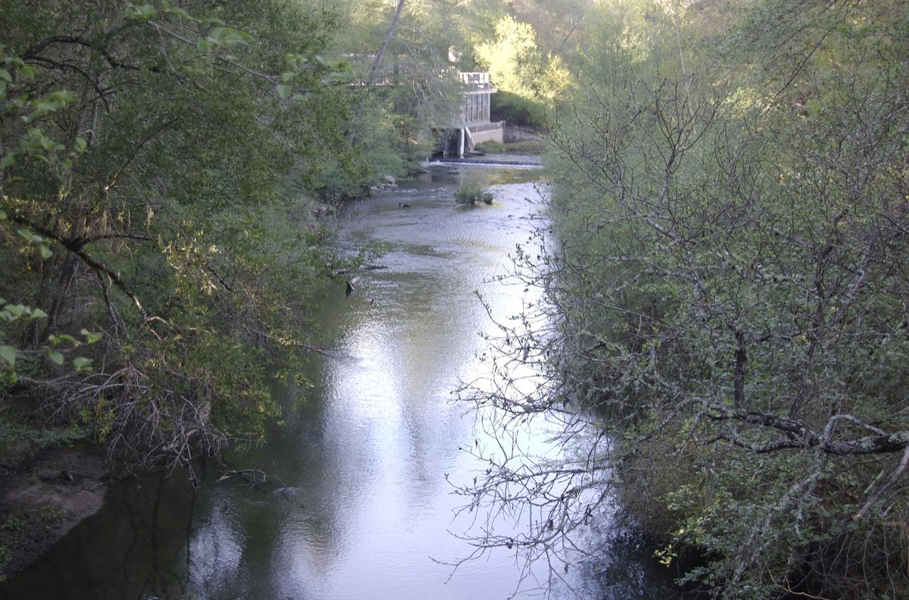 San Lorenzo River Felton