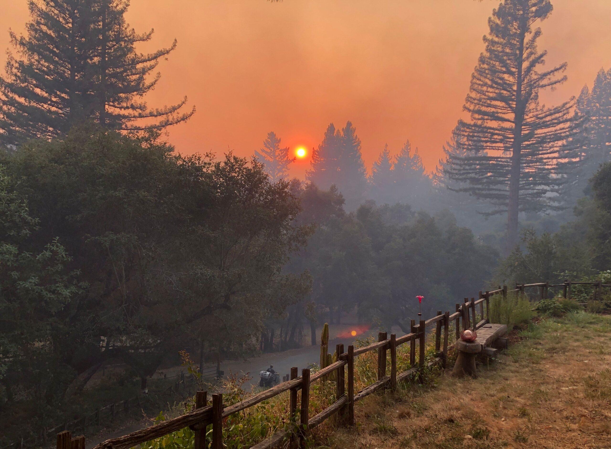 MC Dwyer Boulder Creek CZU Lightning Complex Fire