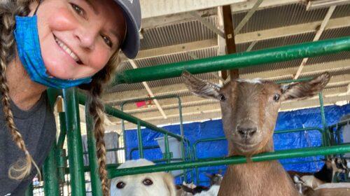 Wendy Vogelsang Santa Cruz County Emergency Animal Shelter