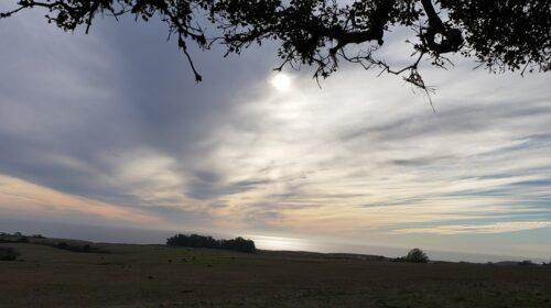 New Years Day hike at Moore Creek Preserve Santa Cruz