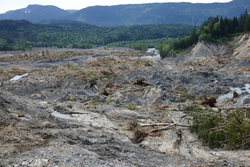 2014 Oso, Washington, landslide killed 43 people