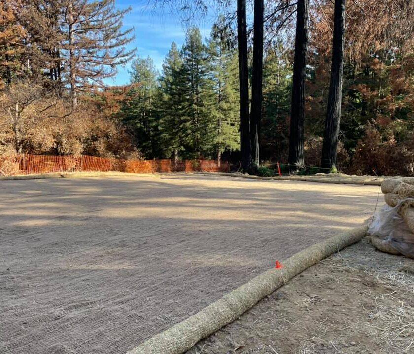 Phase II cleanup Boulder Creek CZU Fire