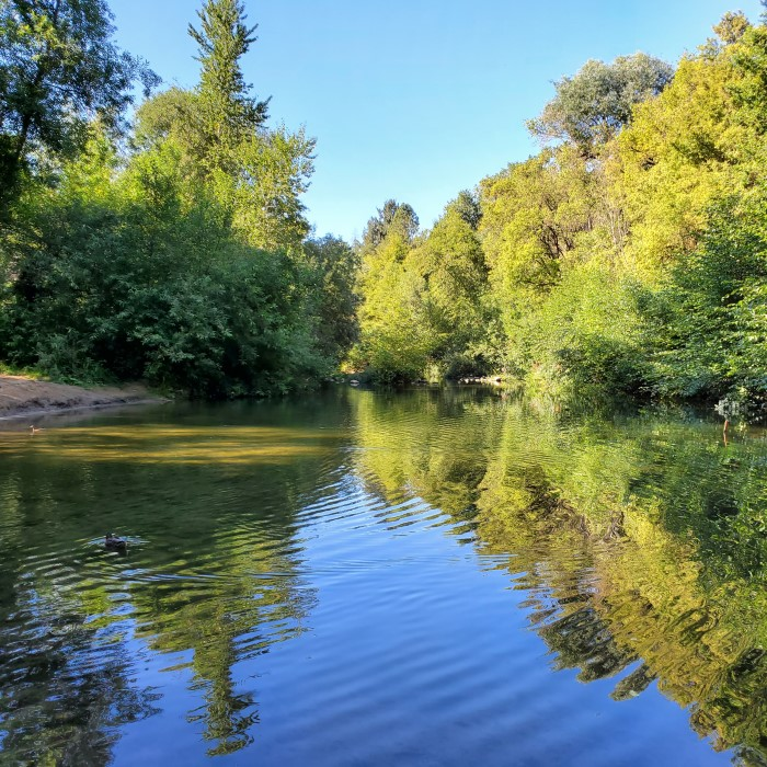 San Lorenzo River photo by Mary Andersen