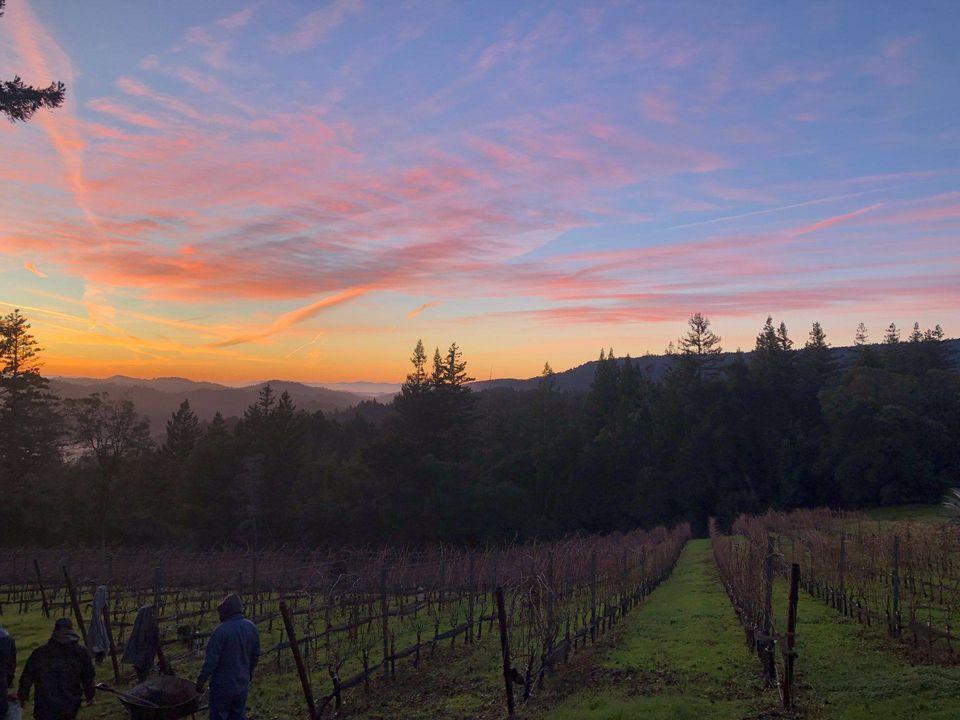 Fireside Fridays at Big Basin Vineyards