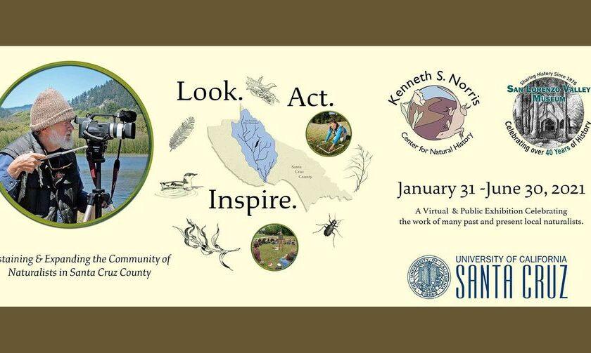 Look Act Inspire SLV Museum