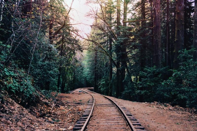 santa cruz mountains rail trail