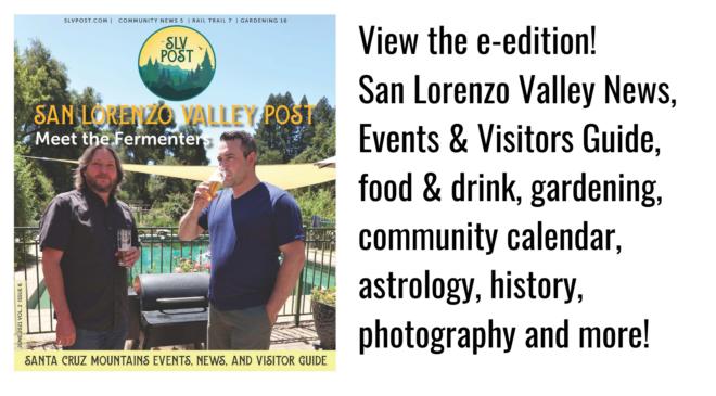 SLV Post June 2021 e-edition