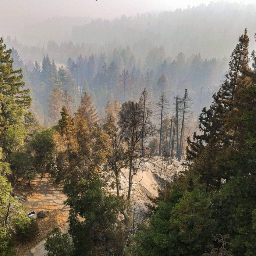 Christopher Bradford Fallen Leaf Boulder Creek