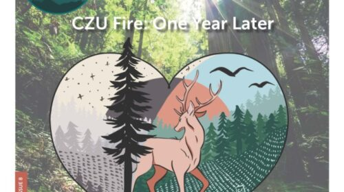 CZU Fire remembrance Cheyanne Valera