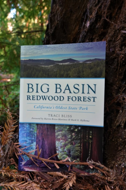 Traci Bliss book Big Basin Redwood Forest