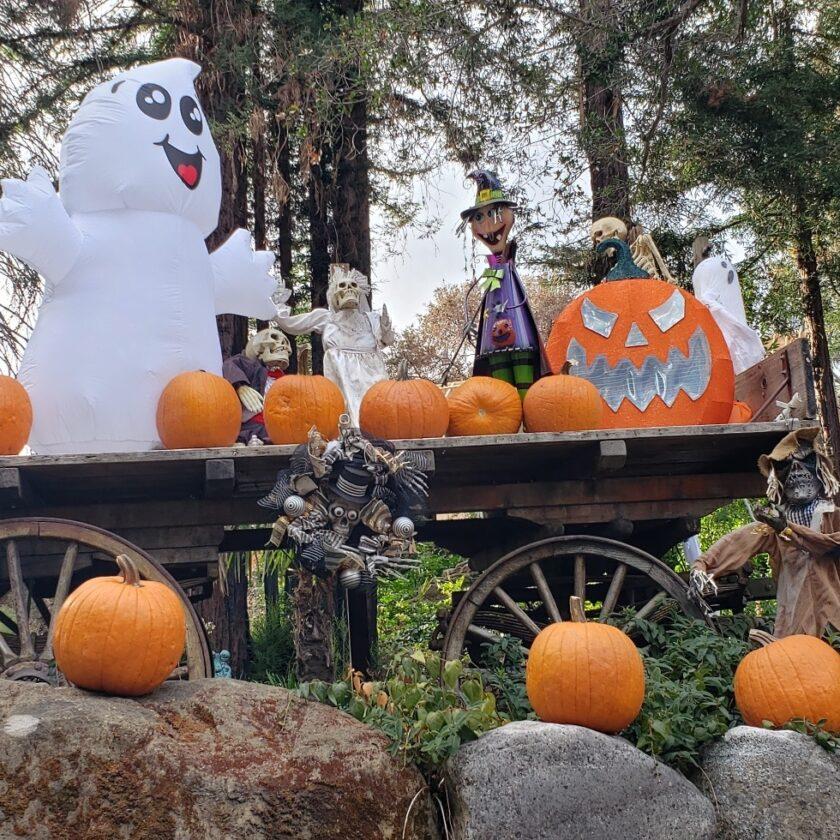 Kinder Homestead Halloween decorations